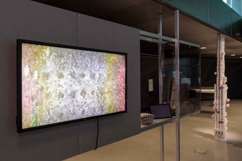 Artificial Life Lab, HIVEOPOLIS. Beehives of the Future © Artificial Life Lab. Ausstellungsansicht, Foto: Kunsthaus Graz/N. Lackner